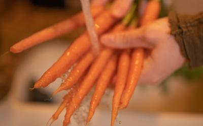 Healthful Carrot Muffin